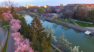 canalul-bega-primavaraa-la-timisoara-flora