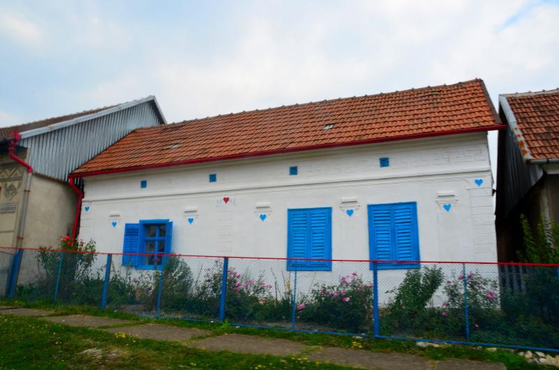 Garnic Dunare mic_12
